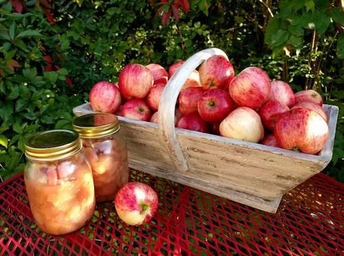 Vinnande efterrätt – varm äppelkompott med glass!