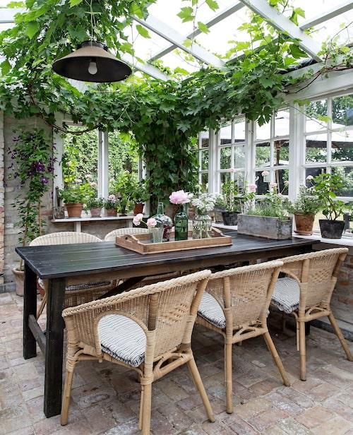 Både familj och vänner ryms kring det stora matbordet, byggt av Jan, i stolar från Ikea. Flaskorna med nedstuckna blomsterstjälkar – enkelt och lika vackert som buketter – är loppisköpta i Frankrike.