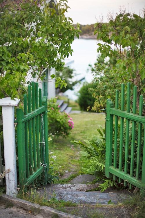 Välkommen in! Genom den grönmålade grinden kommer du in på den kuperade tomten som ligger alldeles intill vattnet.