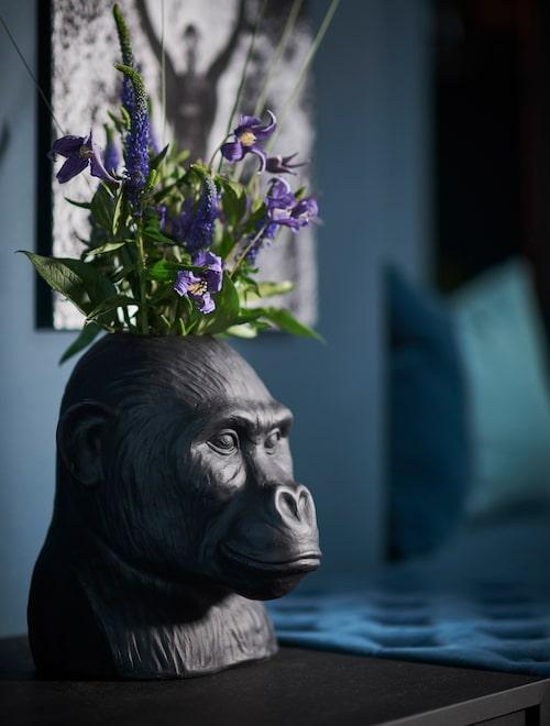 """I hallen gorillavas från Posh living. """"Jag älskar apor!"""""""