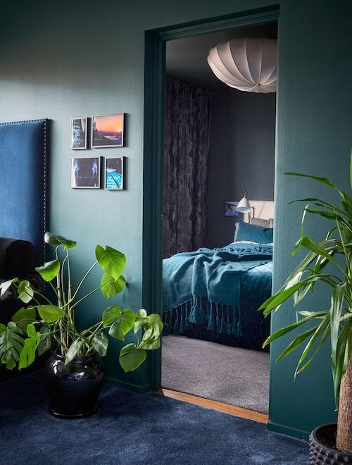Båda rummen är gröna, men färgen byter nyans och mättnad på andra sidan tröskeln. Till vänster skymtar den sammetsklädda ryggen till soffmöbeln vid fönstret.