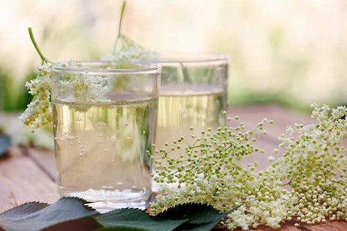 Bästa receptet för fläderblomssaft! Frys in i glasspaket och skopa ur så mycket du behöver.