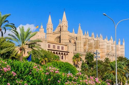 Mallorca är en ö som blomstrar året om.