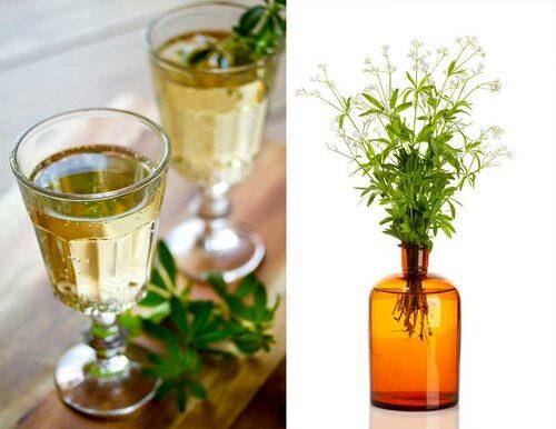 Myskmadra kan smaksätta drycker, eller användas torkad i doftpåsar mot mal.