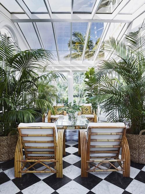 Tamsin Johnson kunde inte motstå frestelsen att ta in trädgården i huset, så den gamla verandan byggdes om till ett partyrum med känsla av Bahamasplantage. Glasat tak, schackrutigt marmorgolv och rottingstolar i midcentury-stil,