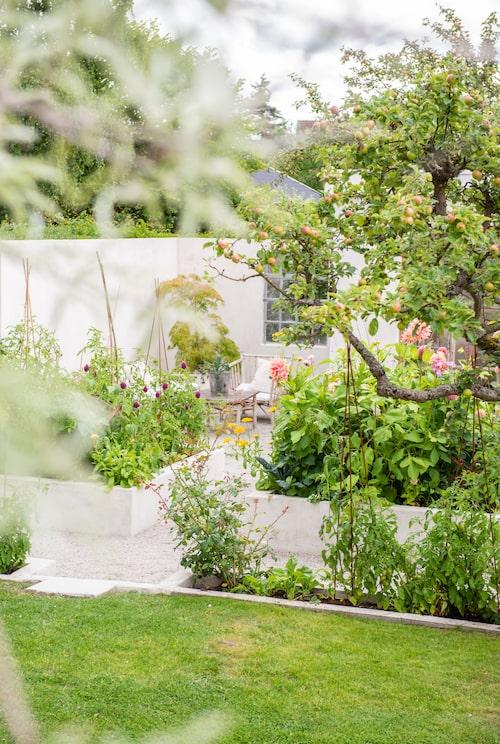 Uteplatsen vid muren ligger inbäddad i grönska tack vare de murade odlingsbäddarna som på sommaren fylls med blommor och grönsaker.