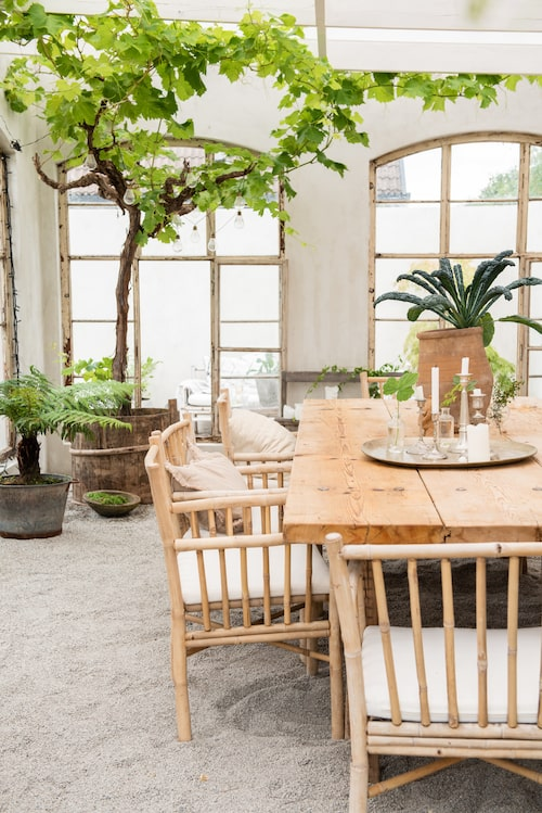 Vinrankor, trädormbunke, hemtrevnad och svartkål växer i orangeriet. Det rejäla bordet är från Affari och stolarna i bambu från Northbynorth.