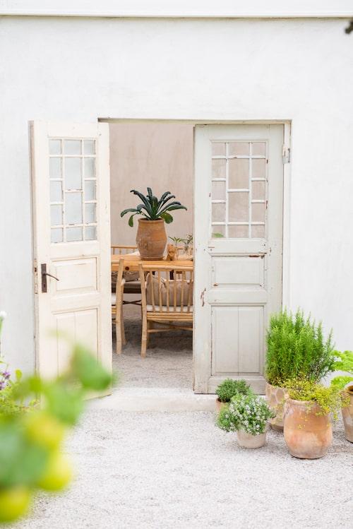 Utanför orangeriet odlar Ulrika örter i kruka. De gamla dörrarna hittade hon på loppis. Bordet i orangeriet köpte hon från Affari och stolarna i bambu från Northbynorth.