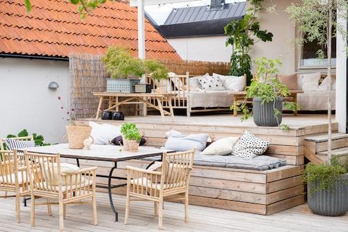 Loungen under tak används varje dag. Taket skyddar mot regn vilket gör att kuddar och dynor kan ligga kvar under hela säsongen. I krukorna växer silverpäron, Muehlenbeckia, fikon, blåregn och japansk lönn.