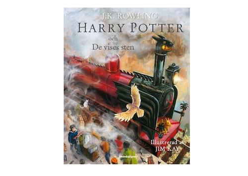 """""""Det duger inte att dröja sig kvar vid drömmar och glömma att leva, kom ihåg det."""" – Dumbledore"""