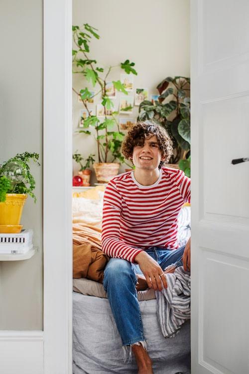 Sebastian Bergström i det ombyggda sovkrypinet,en härlig oas med gröna växter och sköna lakan.