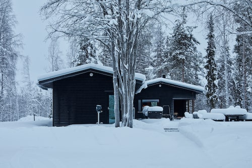 De svarta, snötäckta huskropparna följer upp färgschemat hos omgivningens mörka trädstammar och snötyngda grenar.