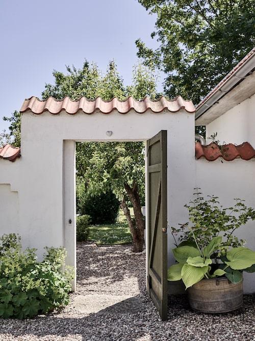En vacker mur förbinder huset med gästhuset och skapar ett spännande blickfång med dörren på glänt in till trädgården.