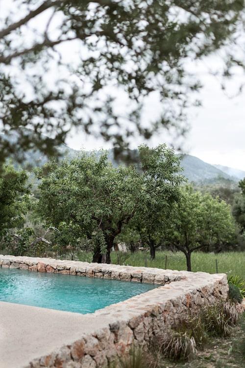 Den magiska utsikten över landsbygden med dess olivlundar och de höga bergen i bakgrunden. Ett perfekt och ogenerat läge för en pool.