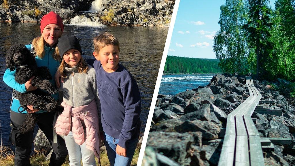 Jenny Fagerlund drog med sig hela familjen på fjällvandring. Till höger ser du Mårdseleforsen som är en populär hiking-väg.