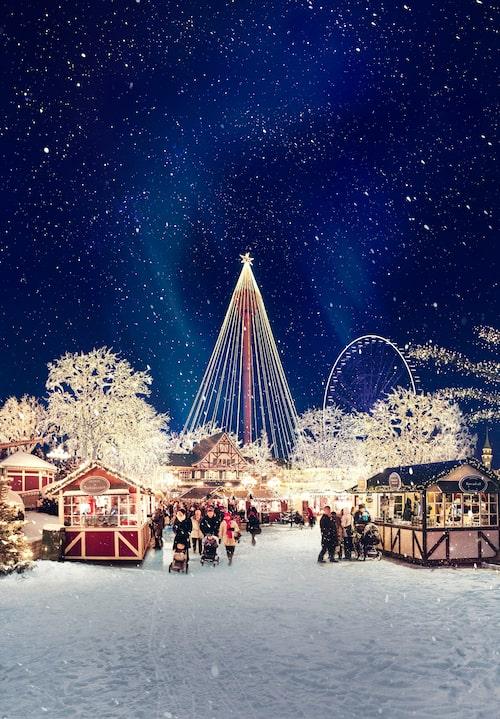 Se Liseberg lysa upp under julen.