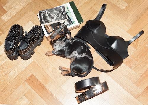 Korsett från Alexander McQueen, skor från Prada, skärp från Hermès, Bob Dylan Chronicles, och taxen Bob-Fred.