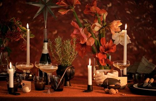 Gör som fransmännen, skåla in julen i champagne!