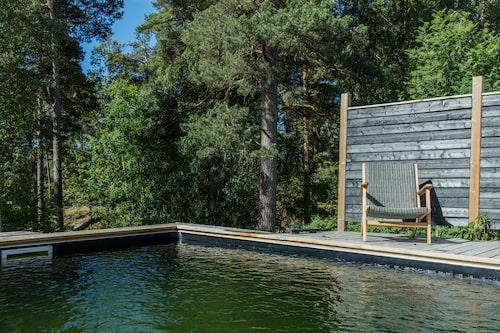 Skogen speglar sig i poolens vatten.