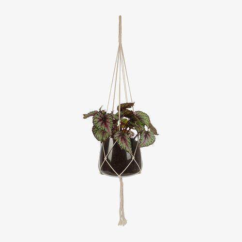 En ampel från Granit tar dina växter till nya höjder.