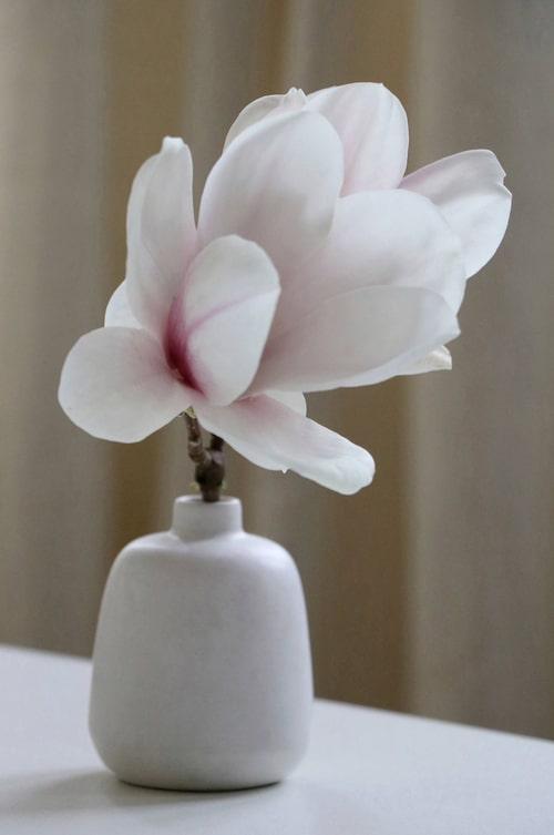 Gullig vas från Mimou för dina färska blommor.
