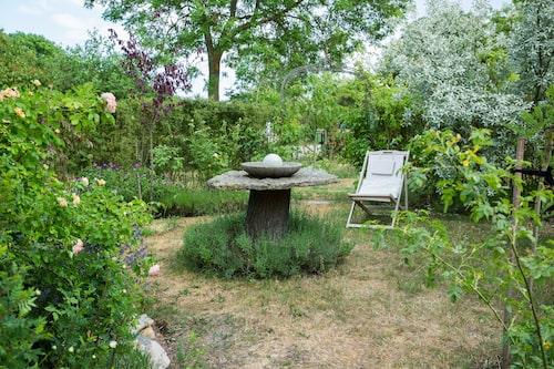 Vattenbrist är ett ständigt hot på Öland. För att jorden ska hålla fukten längre planterar Jeanette tätt, tätt. När det gamla päronträdet gav upp fick stubben bli fundament till ett stenbord med kalkstensskiva.